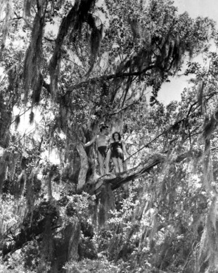 Johnny Weissmuller as Tarzan of the Apes.