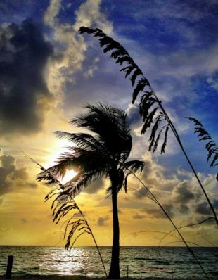 Dawn on Las Olas beach